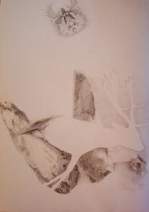 2011 Stopař tužka na papíře 100 x 70 cm (5)