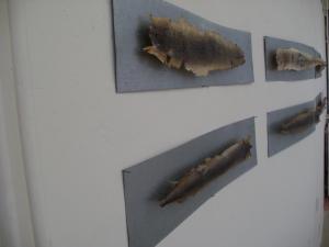 2011 úhoř tetované kůže na pozink. plechu 110 x 25 cm
